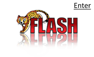 Web development with Flash